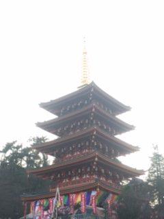 image1250